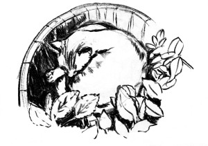 Blumenkübel schwarz auf weiß
