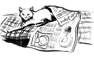 Zeitung schwarz auf weiß