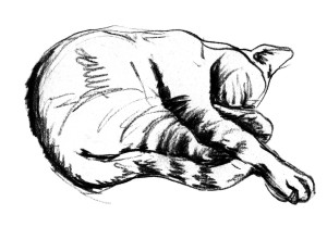 Schlafskizze schwarz auf weiß